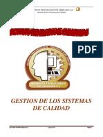 Gestion de Los Sistemas de Calidad Clase TEC II, Plan 2010 Unidad II