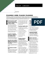 Fact Sheet - Flood