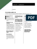Fact Sheet - Tsunami