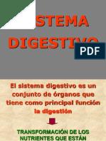 Sistema Digestivo Final