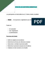 PROTAGONISTAS DE LAS AUDITORÍAS AMBIENTALES