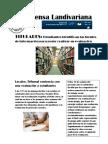 Semana 15 y 16_PDF