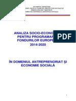 Analiza Antreprenoriat Si Economie Sociala