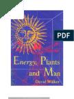 Energy, Plants & Man