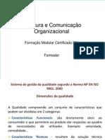 Estrura e Comunicaao Organizacional
