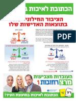 עיתון מרצ רחובות1 במהדורה 2