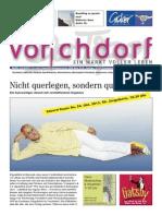Vorchdorfer Tipp 2013-10