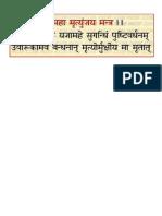 Mrityunjay Jap Mantra in Hindi