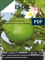 Aires Del Sur Prueba Maquetada
