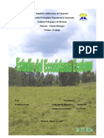 Ecosistema Ecotono