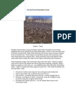 Ciri Dan Proses Pembentkan Tanah