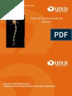 Neurotransmisores 2 Taller