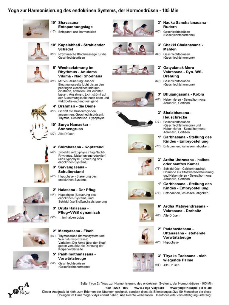 YogaZurHarmonisierungDesEndokrinenSystems Hormone