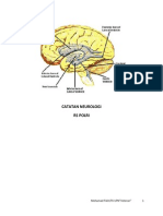 Catatan-Neurologi