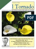 Il_Tornado_618