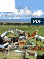 Beef Sire Selection Manual