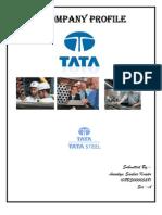 Company Profile of TATA Steel by (Anindya S Kundu)