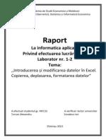 Raport_Seminar01