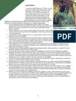 12 Principii Buddhiste.doc