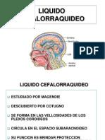 LIQUIDO CEFALORAQUIDEO(corregido)