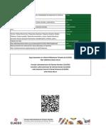 CALCAGNO- Ajuste Estructural. Costo Social y Modalidades de Desarrollo en AL