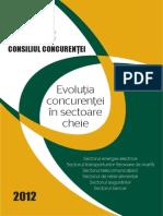 consiliul_concurentei_raport