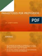 Tema 4 2013 Amebiasis Intestinal Entamoeba Hystolitica