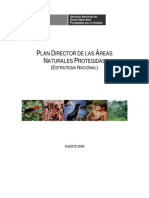 Plan Director ANP 2009