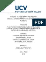 PAGO POR SERVICIOS AMBIENTALES HIDROLÓGICOS.docx