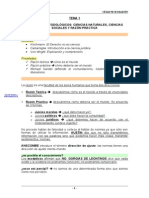 TEORÍA POLÍTICA (Cesar Peces)[1]