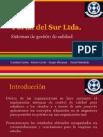 Proyecto Portal Del Sur