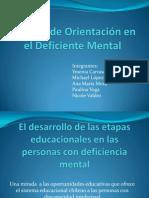 Proceso de Orientación en el Deficiente Mental trabajo