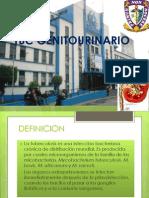 TBC GENITOURINARIO.pptx