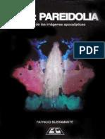 2012-pareidolia