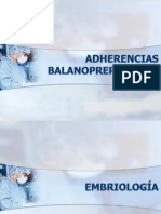 ADHERENCIAS BALANOPREPUCIALES