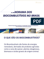 Panorama Dos Biocombustiveis No Brasil