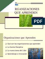 Organizaciones Que Aprenden Ok