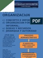 Proceso Administrativo Organización
