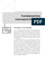 Neuropsicologia Dos Transtornos Mentais