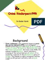 Ovine RinderpestPPR