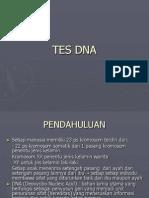 Kuliah TES DNA
