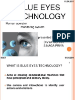 blueeyetechnology-110925103959-phpapp02