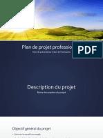 Plan de Projet Professionnel