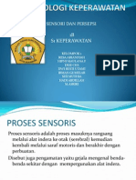 Minggu v Sensoris & Persepsi