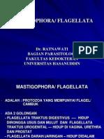 Mastigophora-flagellata