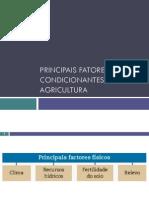1 Principais Fatores Condicionantes Da Agricultura