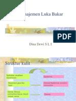 Manajemen Luka Bakar