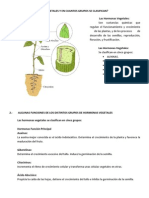 hormonasvegetales-110709101959-phpapp02
