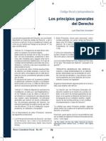 427 Los Principios Generales Del Derecho[1]