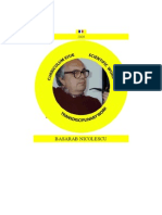 CV BasarabNicolescu